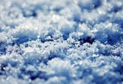 Обои белых снежинок в виде цветов на льду