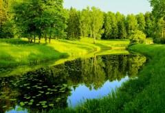 Обои лета цветущей реки