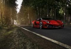 Красное Ламбаргине на лесной трассе