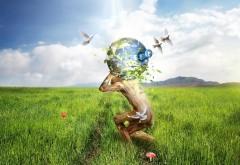 Фэнтези обои Земли 3d