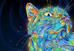 Заставка с рисованным котом