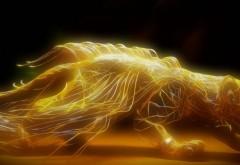 Рисованный огненный кот из пламяни обои искусства