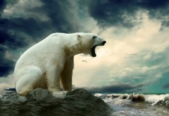 Рычащий большой белый медведь