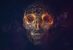 Рисунок черепа на фоне черных роз