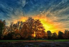 Осенний закат красочные деревья
