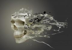 Обои белого черепа разбитого