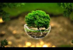 Рисунок кусочка земли с деревом