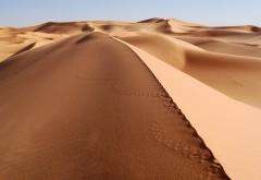 Море песка в пустыне