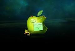 Зеленое яблоко с запиской обои на рабочий стол