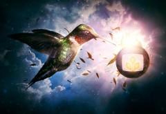 3D заставка яркая птичка в облаках