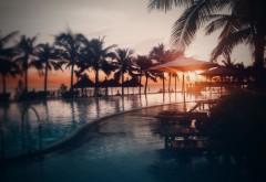 Пляж, бассейн, пальмы, море, солнце, картинки, бесплатно…