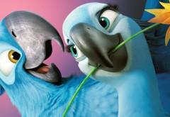 Рио 2 мультфильм влюбленная парочка попугаев