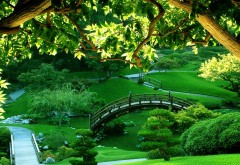 Парк, мост, трава, природа, картинки