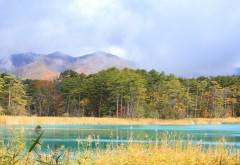 Лес, озеро, горы, небо, природа, картинки, обои , скачать