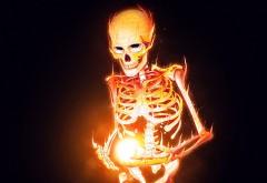Фэнтези скелет в огне заставки на рабочий стол скачать