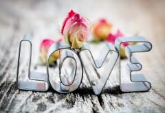 Любовь на полу абстрактные обои