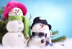 Крутые снеговики в зимней одежде