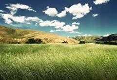Зеленая Долина обои hd на рабочий стол