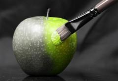 Серо-зеленое яблоко живопись обои hd