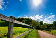 Зеленое лето голубое небо обои hd