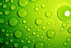 Макро обои капель воды на зеленом фоне hd