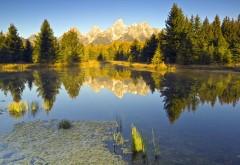 Озеро в лесу картинки на рабочий стол