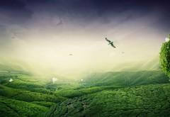 Зеленый ландшафт картинки на рабочий стол