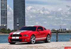 Красный автомобиль Ford Shelby GT500 картинки скачать