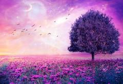 Фиолетовые цветы, поле, арт, дерево, картинки
