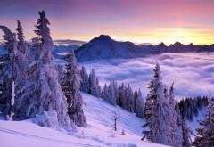 Фиолетовый Зимний закат картинки для рабочего стола скачать