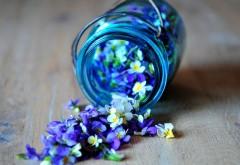 Маленькие цветочки в декоративной баночке