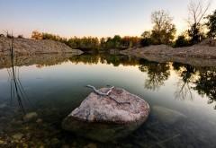 HD обои Спокойное озеро в лесу