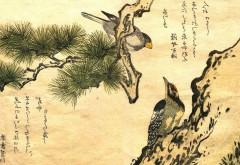 HD обои рисованные птицы на холсте