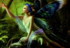 Картинка девушки-эльфийки с крыльями бабочки