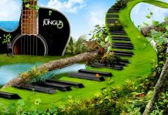 Пианино из травы широкоформатные HD обои скачать