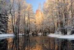 Широкоформатная заставка реки в зимнее время