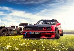 HD обои спортивного автомобиля бмв на лужайке