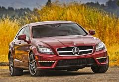 Заставка автомобиля Mercedes-Benz CLS63 AMG