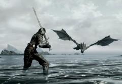 Бой с драконом широкоформатные HD обои скачать на рабоч…