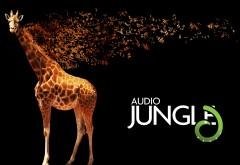 Жираф из джунглей широкоформатные HD обои скачать