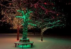 Новогоднее дерево, снег, зима, праздник, огни, фоны, зас�…