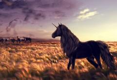 лошадь, единорог, гольф, искусство, трава, ветер, фоны, з…