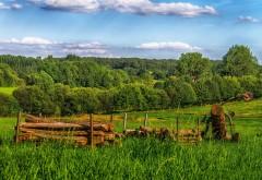 Фото луга возле леса и небольшого поселка