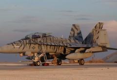 самолет, истребитель, ф-18, шершень, фоны, заставки