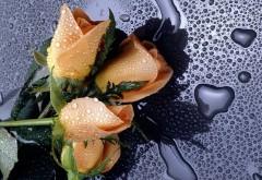Желтый цветок розы с каплями воды заставки скачать