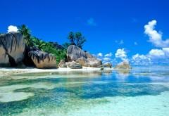 Море, пальмы, побережье, камни, валуны, тропики, фоны, за…