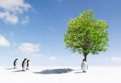 Прикольные пингвины под деревом обои hd бесплатно