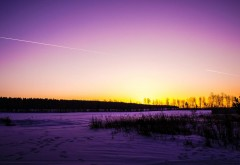 Снег, зима, фиолетовые поля, фиолетовое небо, обои hd, бе�…