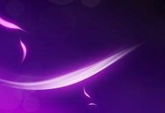 Перья на фиолетовом фоне обои hd бесплатно