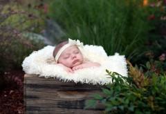 Маленькая красавица спит на природе